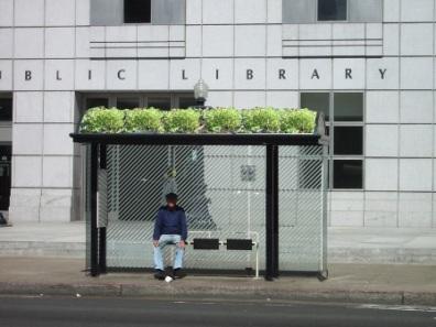 08san Francisco Bus Stop Jpg